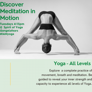 Discover Meditation in Motion Weekly Class